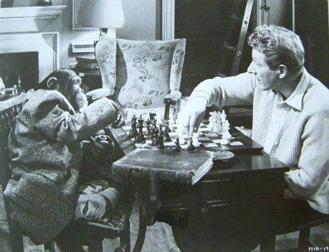 Danny Kaye chess schach Michael Kidd Merry Andrew