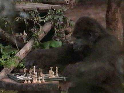 John Cleese (voice) chess schach Sam Weisman George Of The Jungle